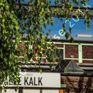 Halle Kalk