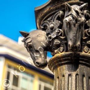Pferdetränke am Remigiusplatz Bonn