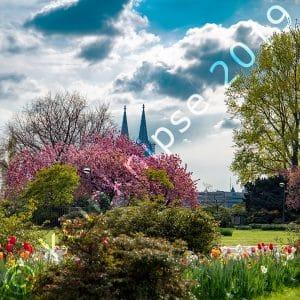 Frühling im Kölner Rheinpark