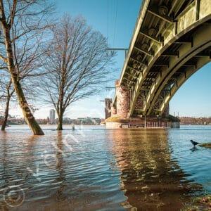 Hochwasser Köln Südbrücke